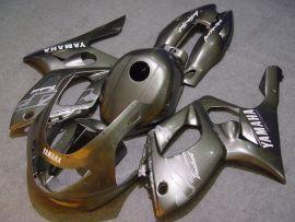 Yamaha YZF-600R 1994-2007 Carénage ABS - autres - argent